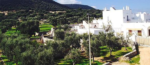 http://www.pugliaetmores.it/Images/Locandine/Articoli/Brindisi10NPLocand2.jpg